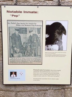 A dog named Pep that was convicted of murdering a cat